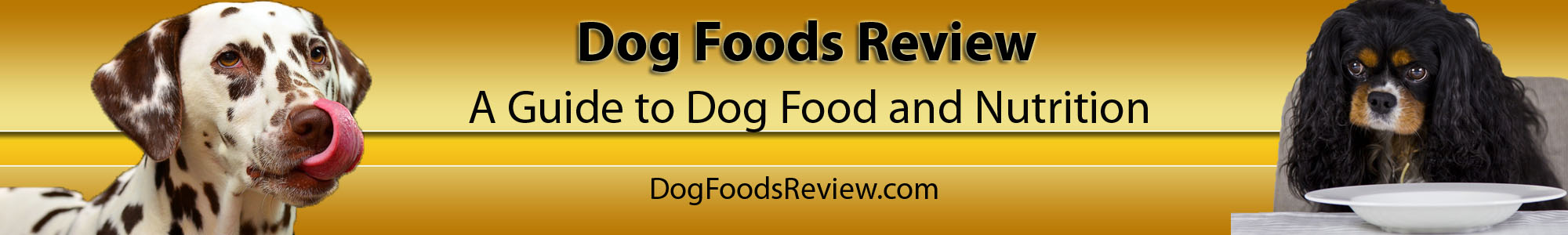 DogFoodsReview.com