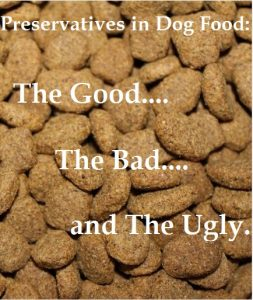 preservatives in dog food